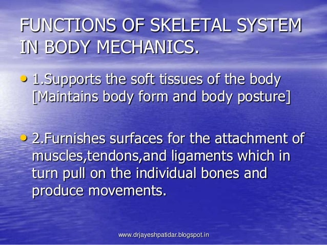 FUNCTIONS OF SKELETAL SYSTEMIN BODY MECHANICS.• 1.Supports the soft tissues of the body[Maintains body form and body postu...