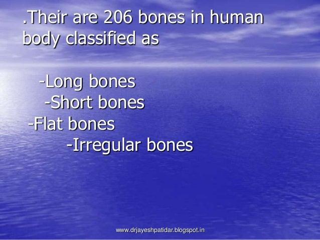 .Their are 206 bones in humanbody classified as-Long bones-Short bones-Flat bones-Irregular boneswww.drjayeshpatidar.blogs...