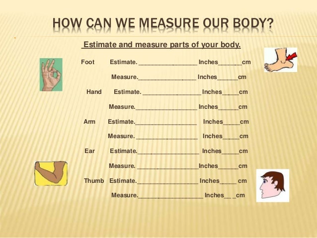 Body parts Unit lesson Plans by Arianny Saviñòn & Team