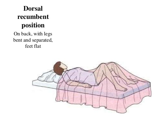 Medical Terminology - Body position