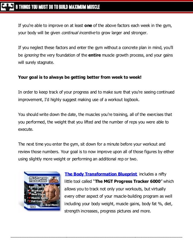 beginners blueprint to diet and training free pdf