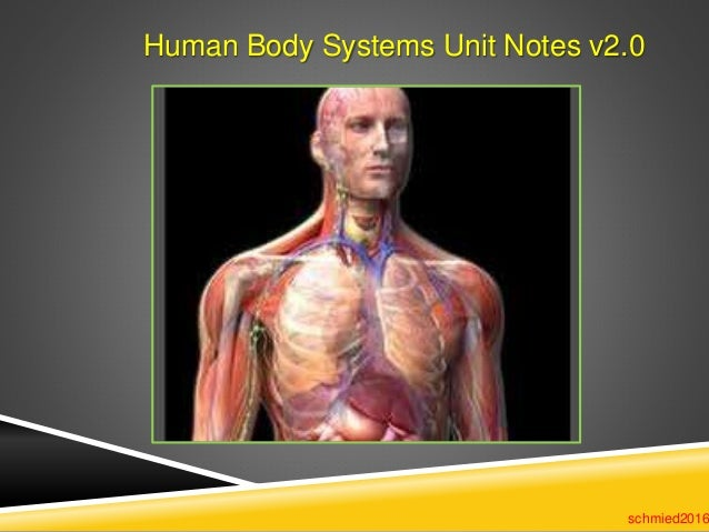 Human Body Systems Unit Notes v2.0 schmied2016