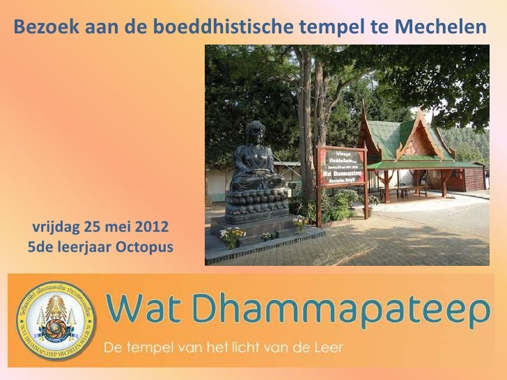 Bezoek aan de boeddhistische tempel te Mechelen  vrijdag 25 mei 2012 5de leerjaar Octopus