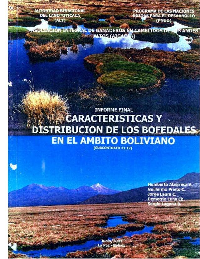 AUTORIDAD  BINACIONAL DEL  PROGRAMA DE LAS  NACIONES UNIDAS PARA