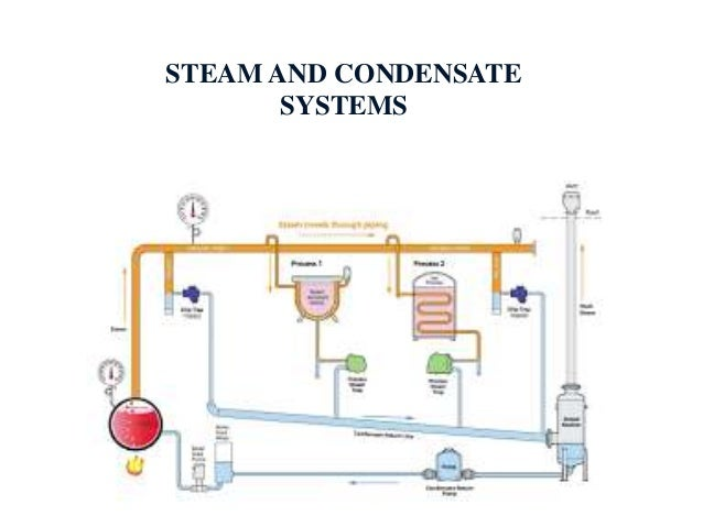 Boiler, Steam Trapes, Insulation and Steam Distribution System