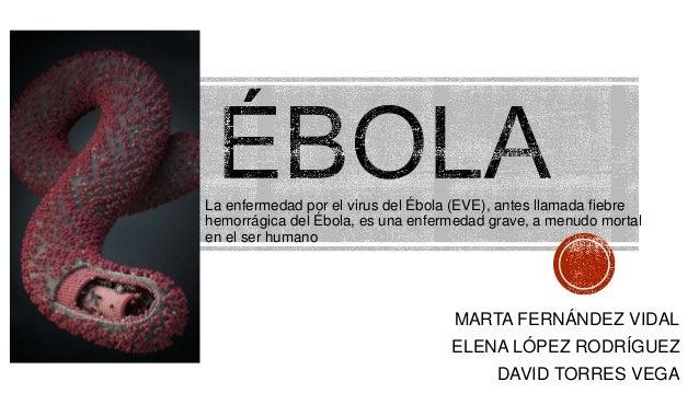 MARTA FERNÁNDEZ VIDAL ELENA LÓPEZ RODRÍGUEZ DAVID TORRES VEGA La enfermedad por el virus del Ébola (EVE), antes llamada fi...