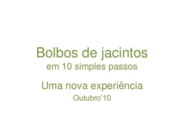 Bolbos de jacintos em 10 simples passos Uma nova experiência Outubro'10