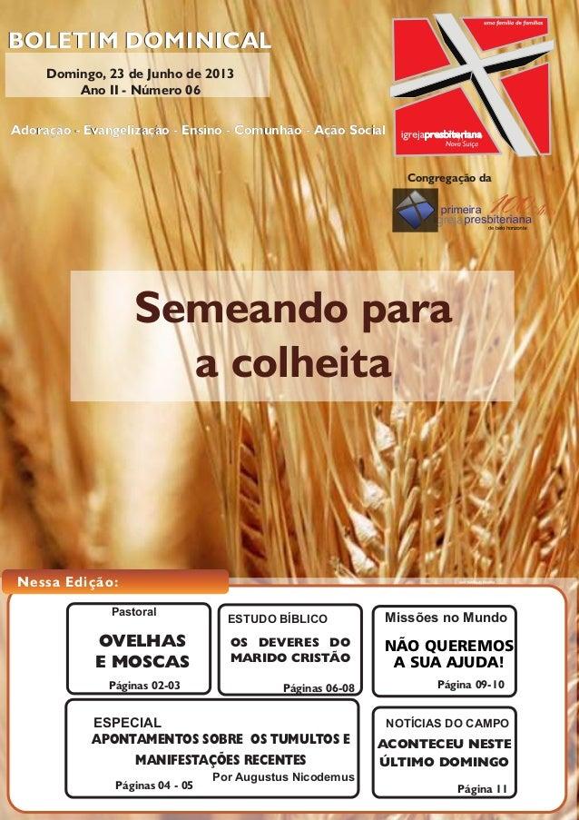 Semeando paraa colheitaBOLETIM DOMINICALRua Limoeiro, 204 - Nova Suíça - Belo Horizonte - MG - CEP 30421-185 | tel.: (31) ...