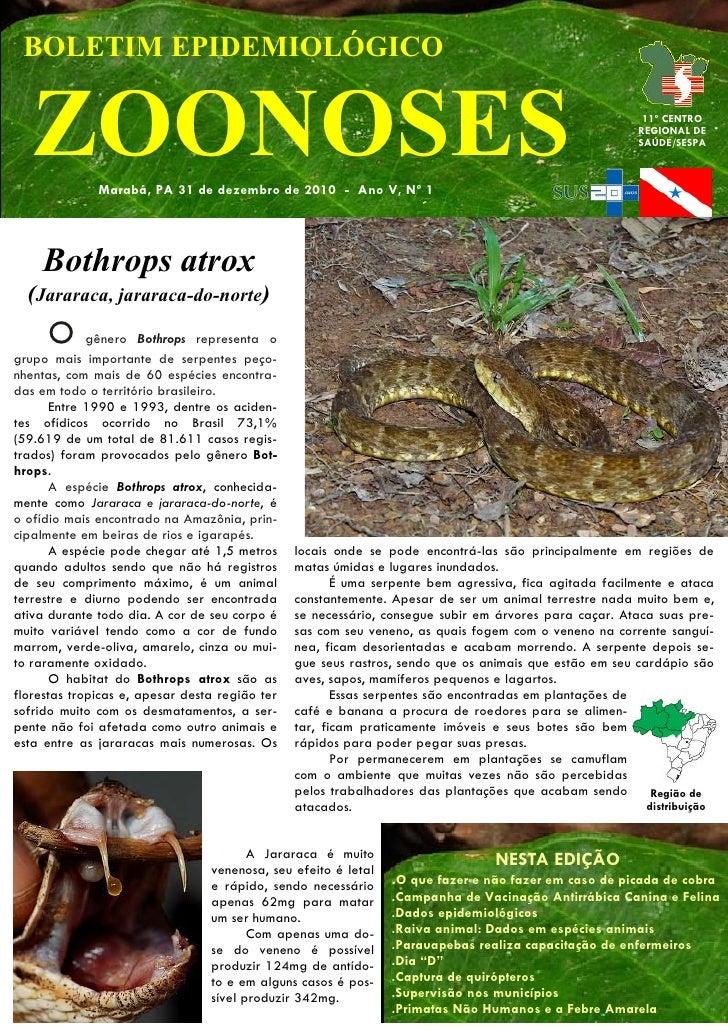 BOLETIM EPIDEMIOLÓGICO   ZOONOSES   Marabá, PA 31 de dezembro de 2010 - Ano V, Nº 1                                       ...