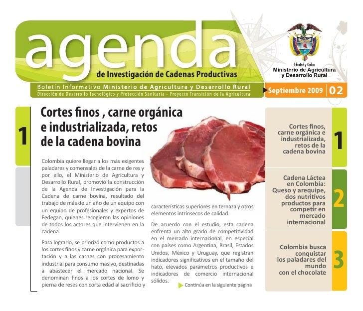 agenda                                  de Investigación de Cadenas Productivas     D i re cc i ó n d e D e s a r ro l l o...