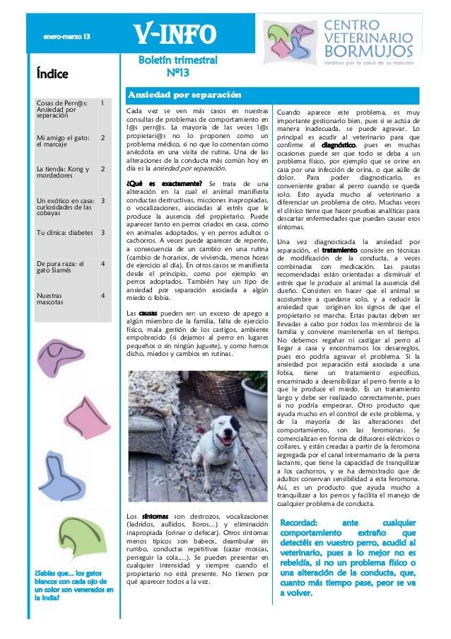 enero-marzo 13                              V-Info                                Boletín trimestralÍndice                ...