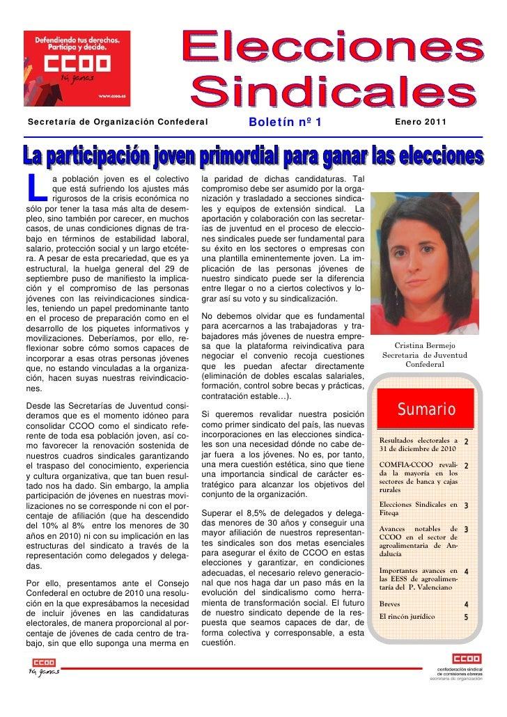 Secretaría de Organización Confederal                       Boletín nº 1                            Enero 2011L        a p...