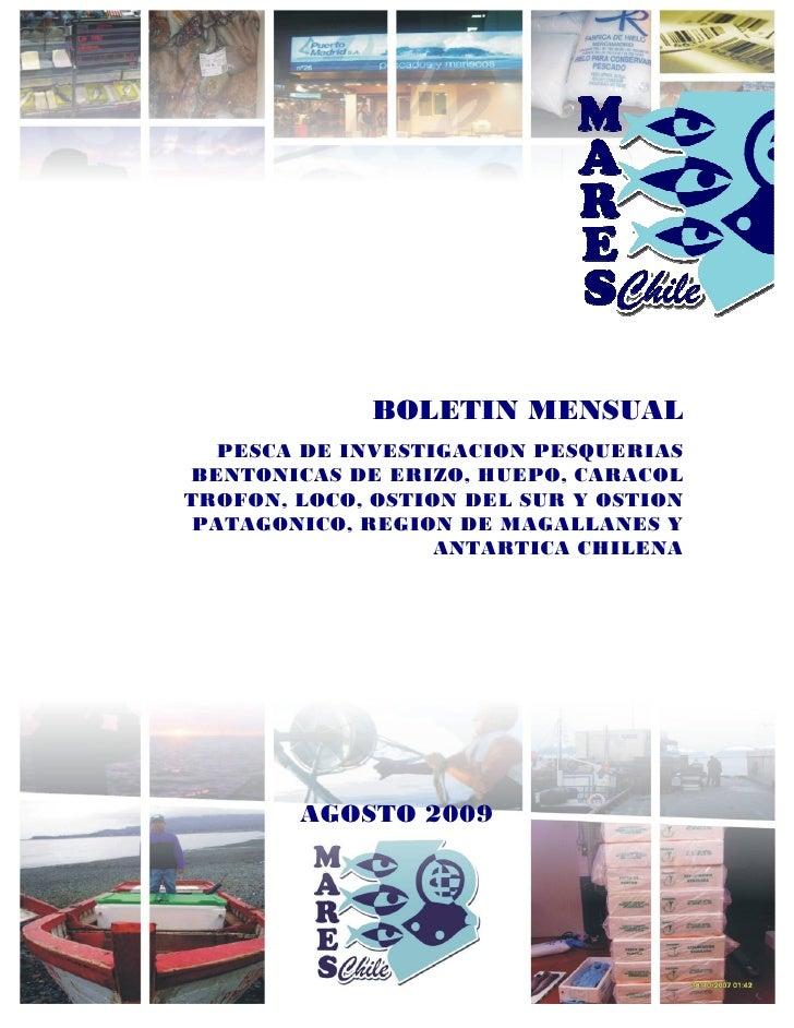 BOLETIN MENSUAL    PESCA DE INVESTIGACION PESQUERIAS BENTONICAS DE ERIZO, HUEPO, CARACOL TROFON, LOCO, OSTION DEL SUR Y OS...