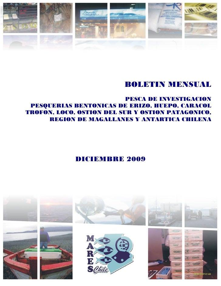 BOLETIN MENSUAL                            PESCA DE INVESTIGACION  PESQUERIAS BENTONICAS DE ERIZO, HUEPO, CARACOL TROFON, ...