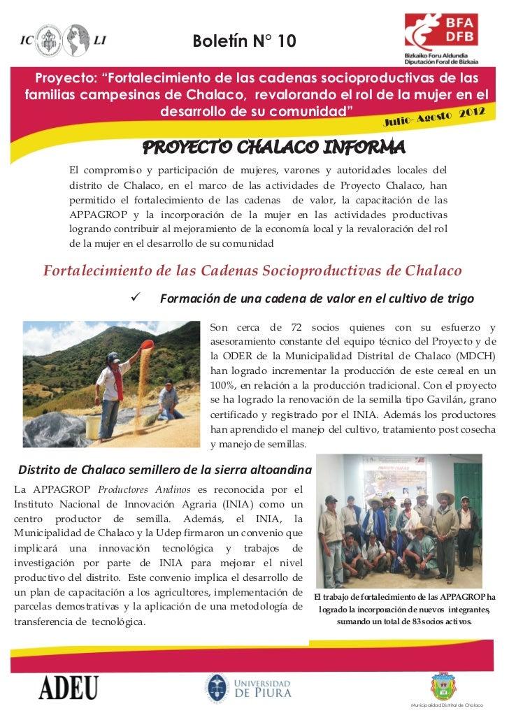 """Boletín N° 10    Proyecto: """"Fortalecimiento de las cadenas socioproductivas de las  familias campesinas de Chalaco, revalo..."""