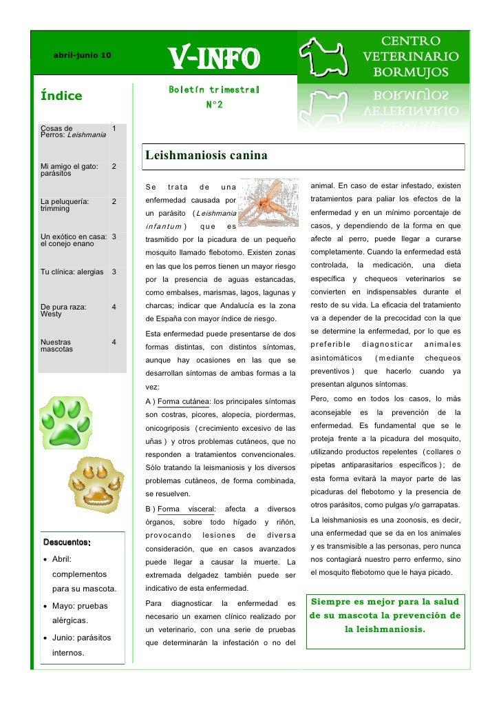 abril-junio 10                                  V-Info                                  Boletín trimestralÍndice          ...