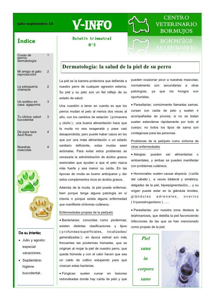 julio-septiembre 10                                    V-Info                                    Boletín trimestralÍndice ...