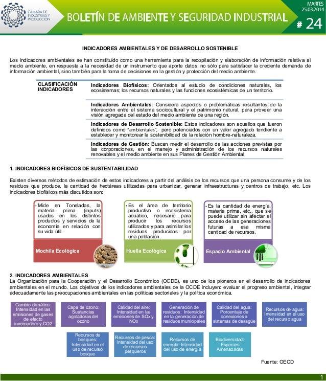 INDICADORES AMBIENTALES Y DE DESARROLLO SOSTENIBLE Los indicadores ambientales se han constituido como una herramienta par...