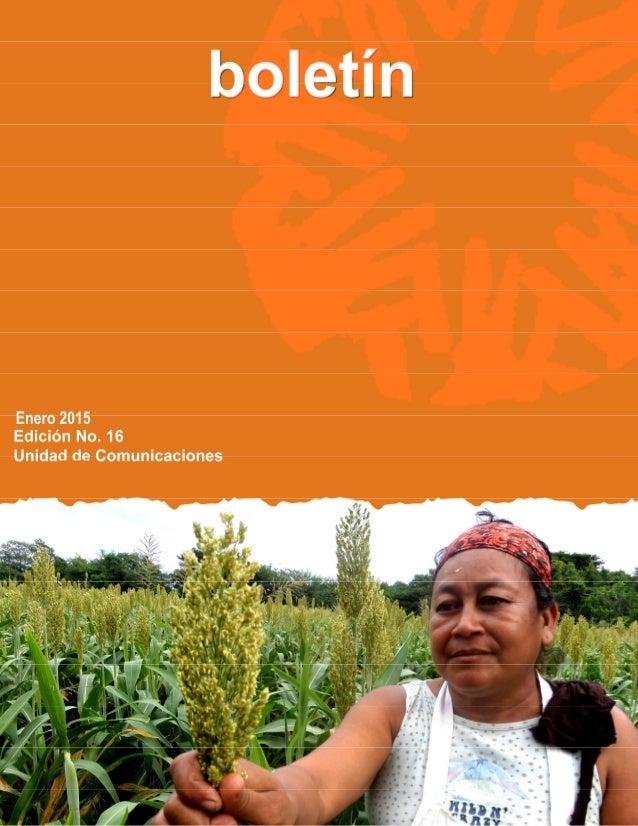IMAGEN DE PORTADA: Como parte del proyecto Nutriendo el Futuro se están fortaleciendo capacidades de productoras de sorgo ...