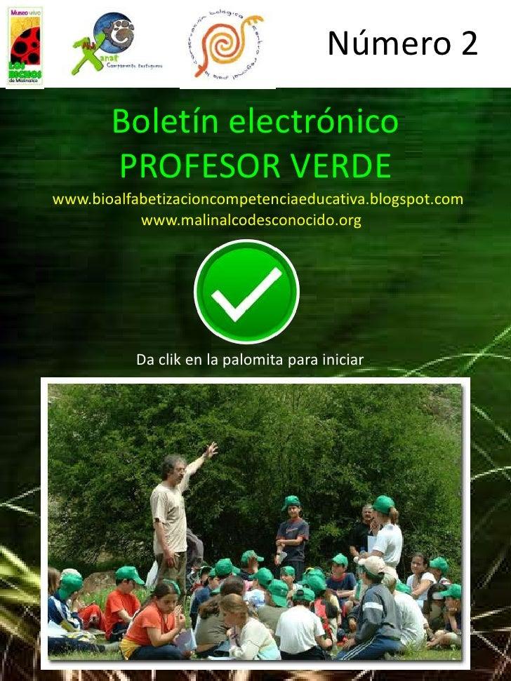 Número 2       Boletín electrónico       PROFESOR VERDEwww.bioalfabetizacioncompetenciaeducativa.blogspot.com           ww...