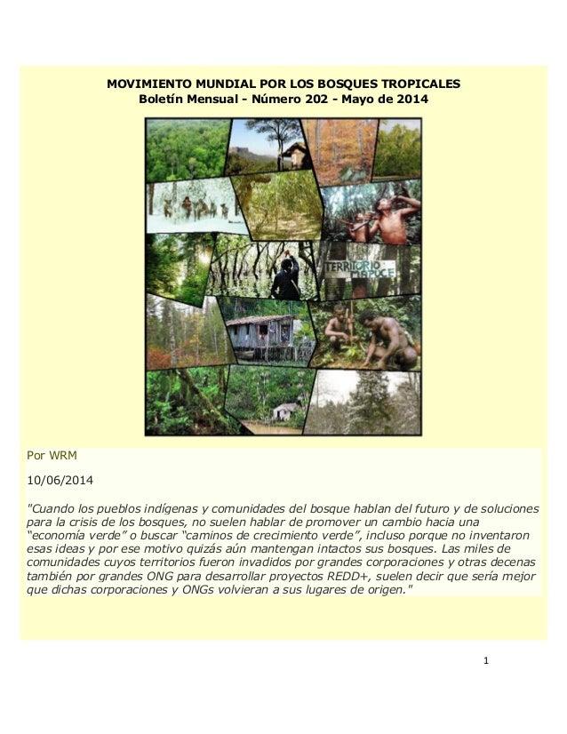 """1 MOVIMIENTO MUNDIAL POR LOS BOSQUES TROPICALES Boletín Mensual - Número 202 - Mayo de 2014 Por WRM 10/06/2014 """"Cuando los..."""