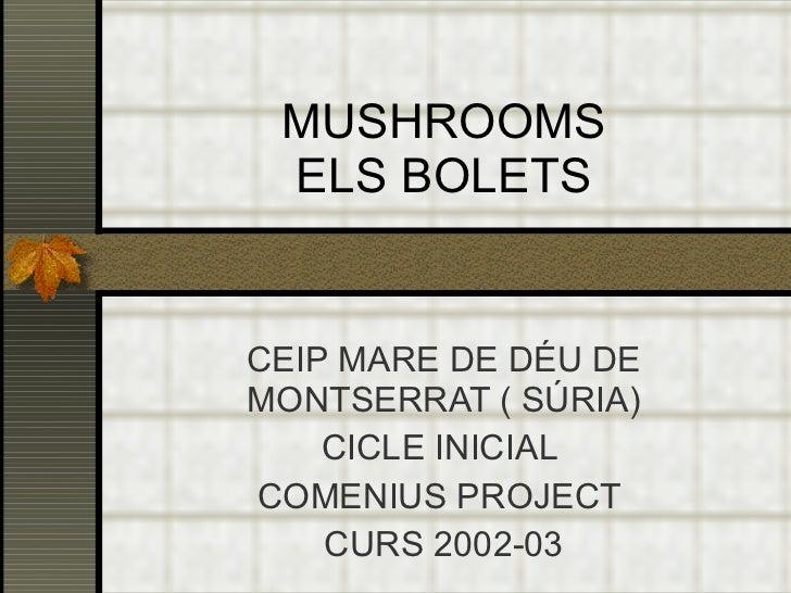 MUSHROOMS ELS BOLETS CEIP MARE DE DÉU DE MONTSERRAT ( SÚRIA) CICLE INICIAL  COMENIUS PROJECT  CURS 2002-03
