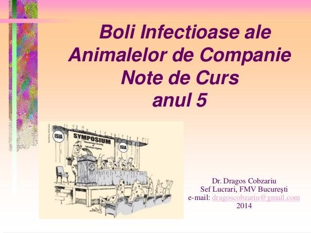 Boli Infectioase ale Animalelor de Companie Note de Curs anul 5 Dr. Dragos Cobzariu Sef Lucrari, FMV Bucureşti e-mail: dra...