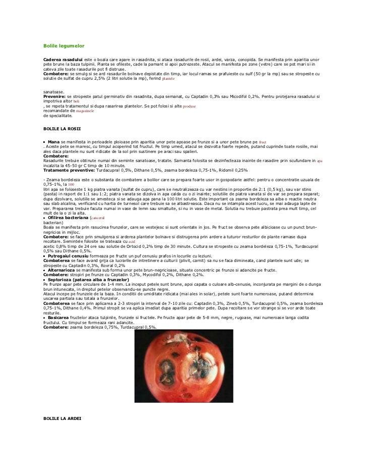 Bolile legumelorCaderea rasadului este o boala care apare in rasadnita, si ataca rasadurile de rosii, ardei, varza, conopi...