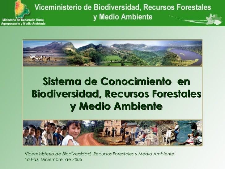 VBIOREFORMA    Sistema de Conocimiento en  Biodiversidad, Recursos Forestales          y Medio AmbienteViceministerio de B...