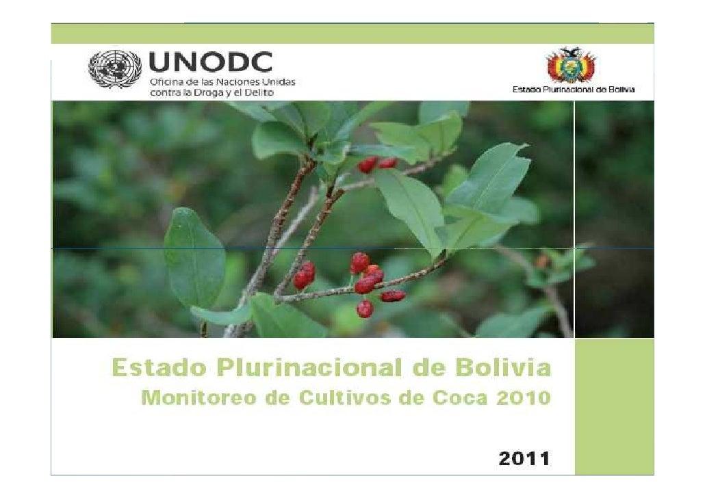 Estado Plurinacional de                                  BoliviaCultivo de hoja de coca en Bolivia Año 2010               ...