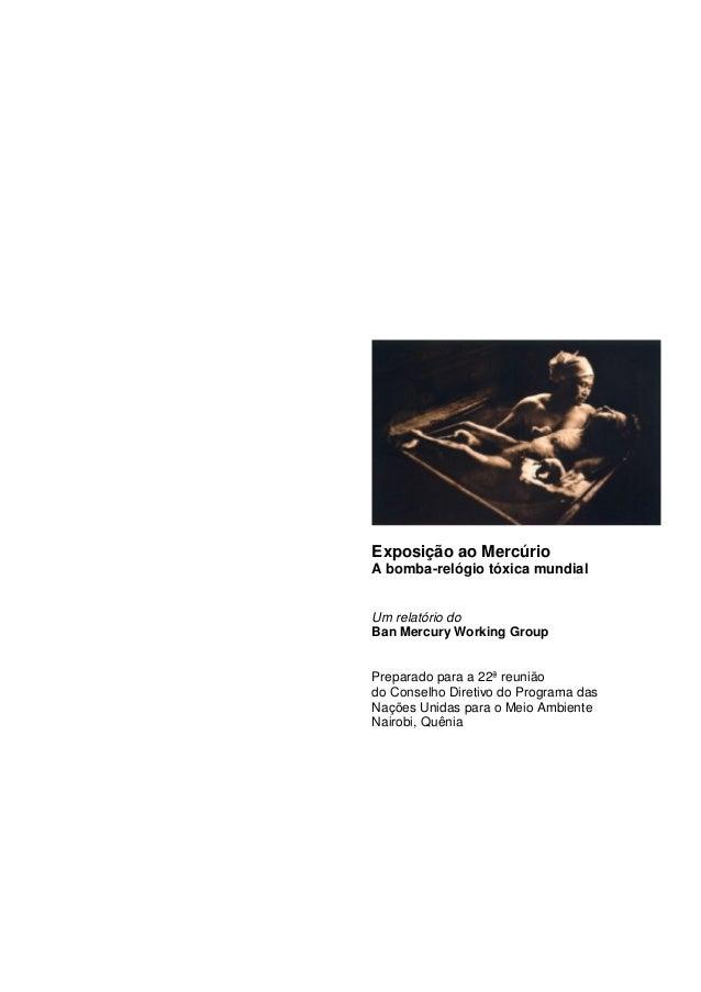 Exposição ao MercúrioA bomba-relógio tóxica mundialUm relatório doBan Mercury Working GroupPreparado para a 22ª reuniãodo ...