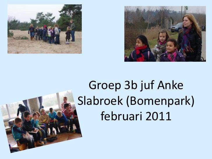 Groep 3b juf AnkeSlabroek (Bomenpark)februari 2011<br />