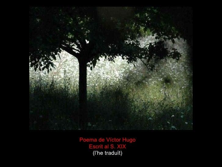 Poema de Víctor Hugo Escrit al S. XIX (l'he traduït)