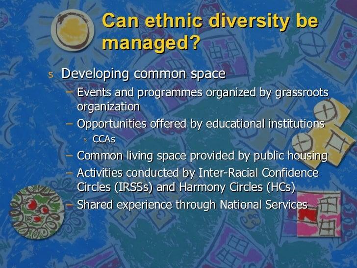 Can ethnic diversity be managed? <ul><li>Developing common space </li></ul><ul><ul><li>Events and programmes organized by ...