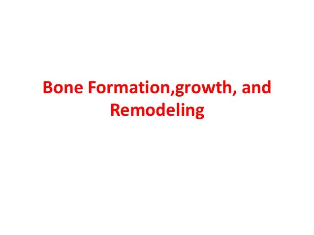 Bone Formation,growth, and Remodeling