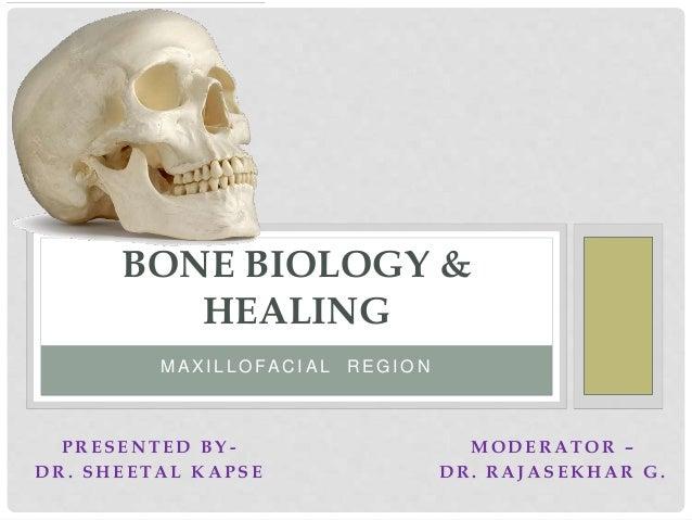 Bone biology and bone healing