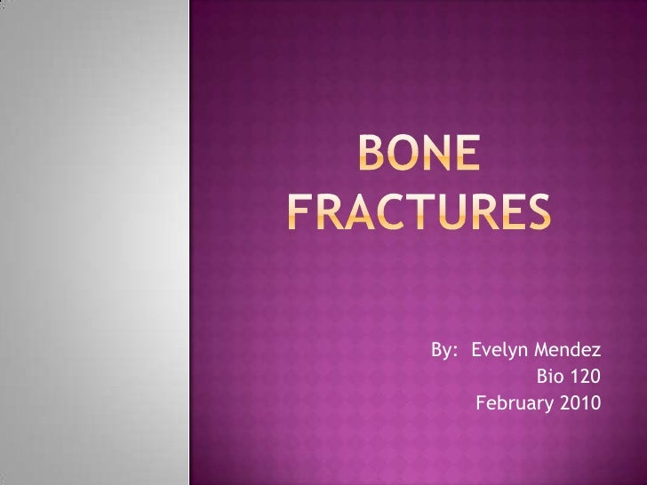 BONE FRACTURES<br />By:  Evelyn Mendez<br />Bio 120<br />February 2010<br />