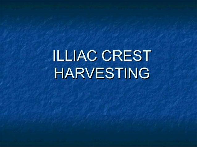 ILLIAC CRESTILLIAC CREST HARVESTINGHARVESTING