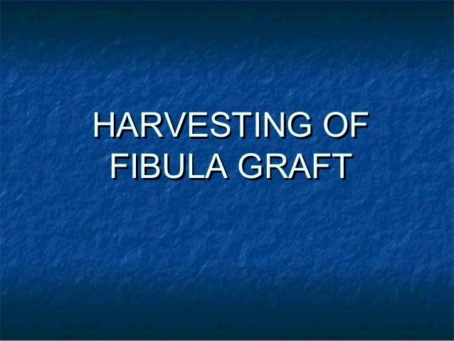 HARVESTING OFHARVESTING OF FIBULA GRAFTFIBULA GRAFT