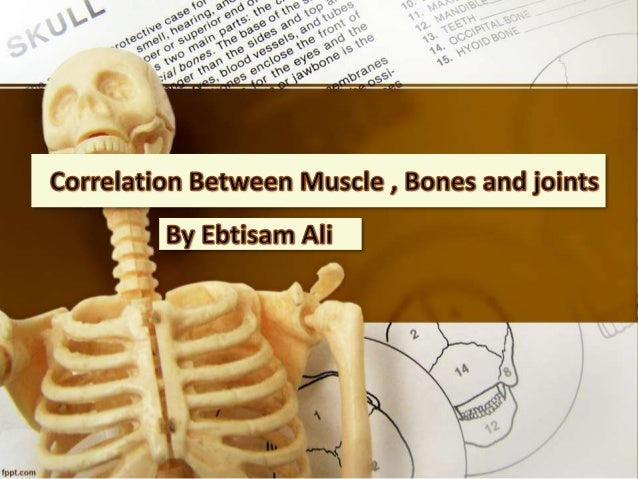 Most actions in our body like standing, walking,  running and playing, require using our bones,  muscles, and joints.  Wit...