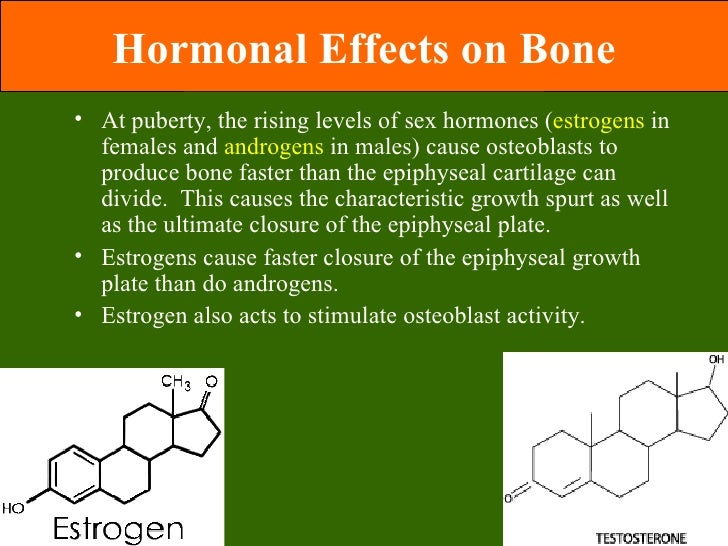 Epiphyseal plates and sex hormones