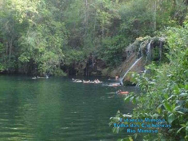 Estância Mimosa Trilha das Cachoeiras Rio Mimoso