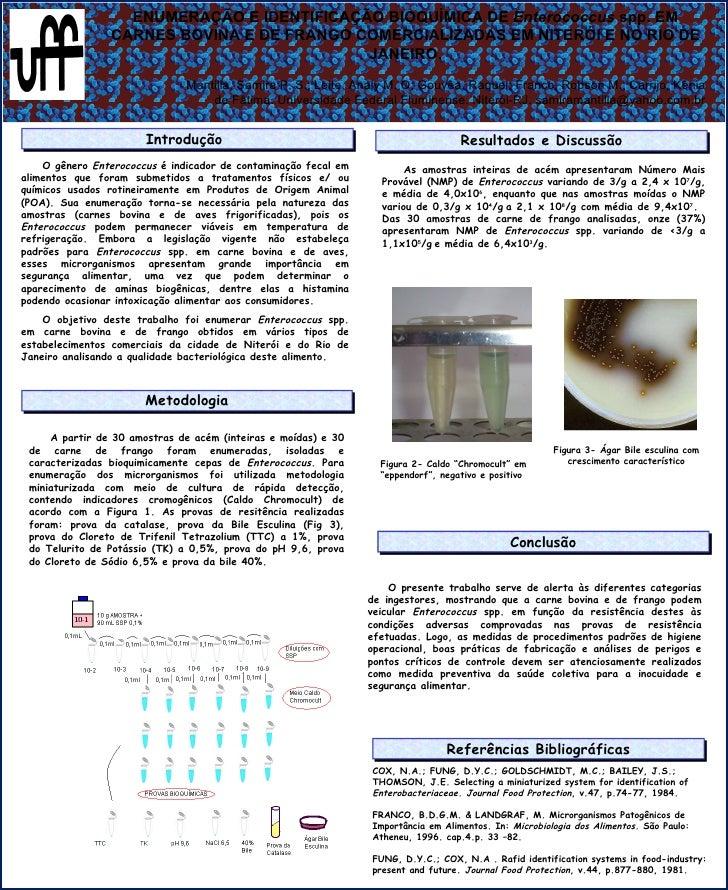 ENUMERAÇÃO E IDENTIFICAÇÃO BIOQUÍMICA DE  Enterococcus  spp. EM CARNES BOVINA E DE FRANGO COMERCIALIZADAS EM NITERÓI E NO ...