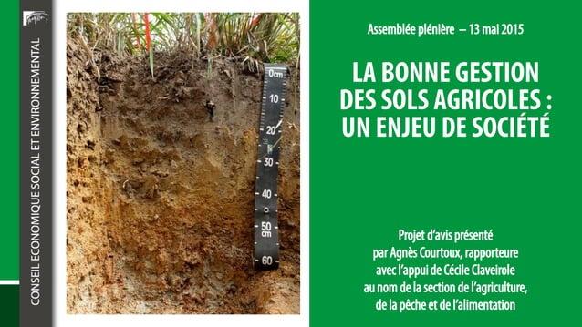 • Les sols hébergent une biodiversité formidable • Combien d'individus ? • • • • • • Cela représente environ 5 tonnes par ...