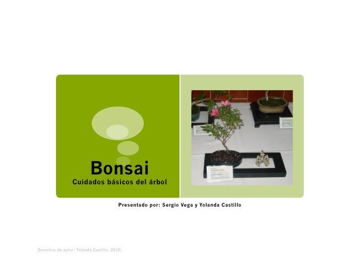 Bonsai                 Cuidados básicos del árbol                                        Presentado por: Sergio Vega y Yol...