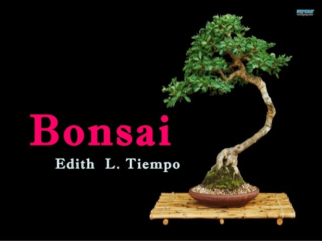 bonsai by edith tiempo 30082017  author's biography poem creative video presentation analysis of literature.