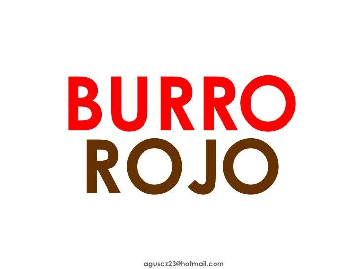 BURRO ROJO [email_address]
