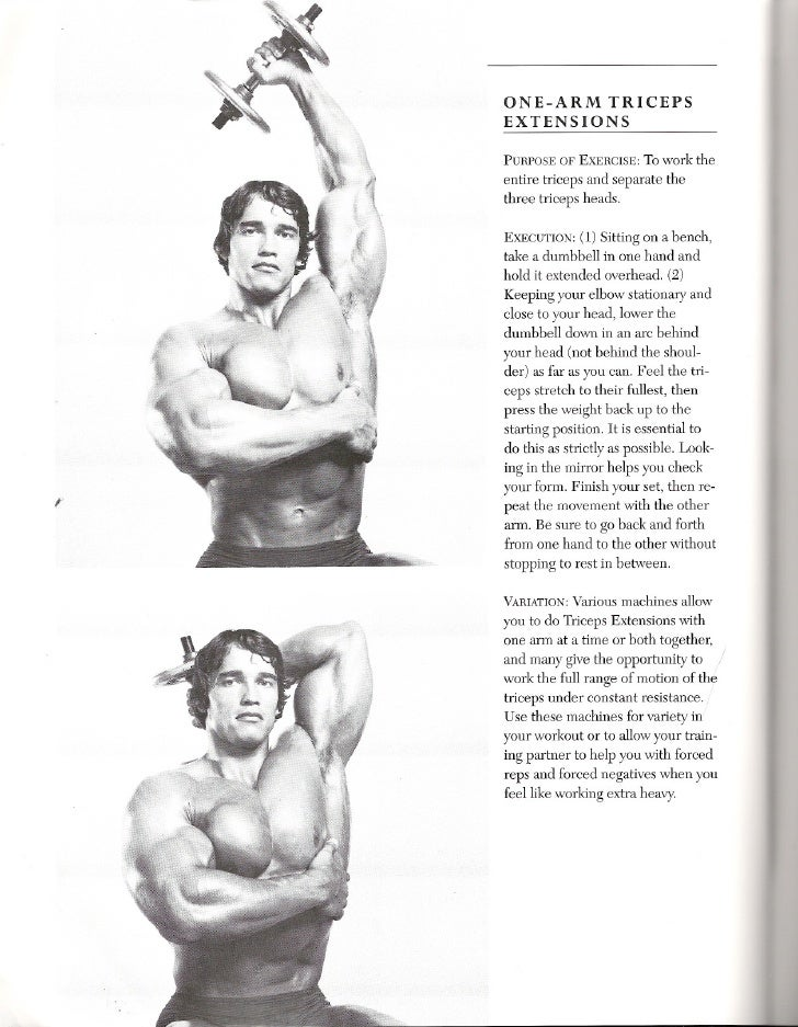 Book 3 8 2 Tricep Exercises