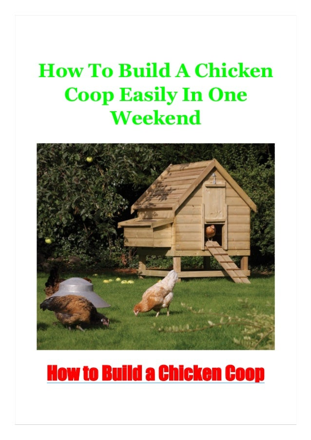 How To Build A Chicken Coop Easily In One Weekend How to Build a Chicken Coop