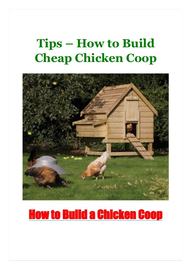 Tips – How to Build Cheap Chicken Coop How to Build a Chicken Coop